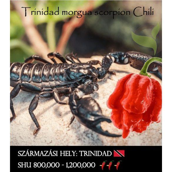 Trinidad Morgua Scorpion
