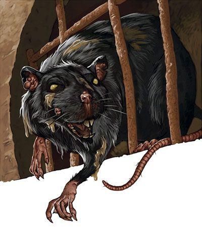 December 14 - patkányűző Nikázius napja